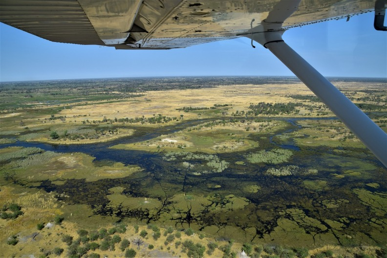 Okavango Scenic Flight Tour